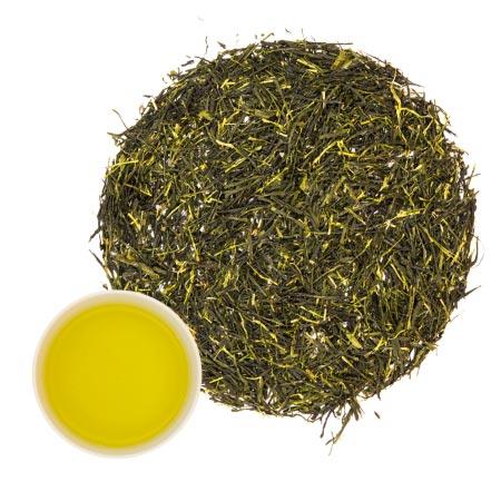 gruener-tee TEZEN Beste Teesorten entdecken. Hochwertige Tees Online kaufen