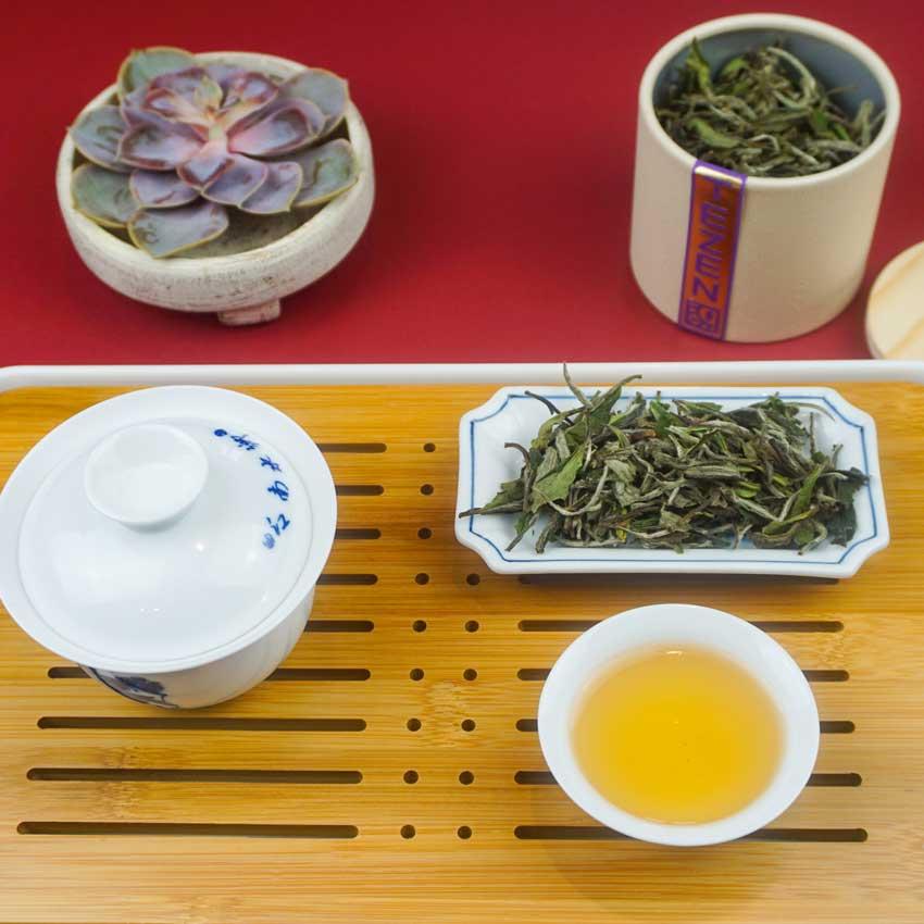 bai-mu-dan-tablet-schraeg-blog TEZEN Beste Teesorten entdecken. Hochwertige Tees Online kaufen