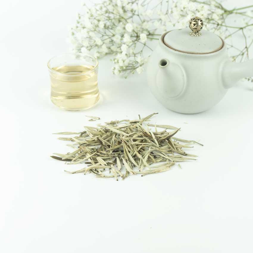 silver-needles-weiss-blog TEZEN Beste Teesorten entdecken. Hochwertige Tees Online kaufen